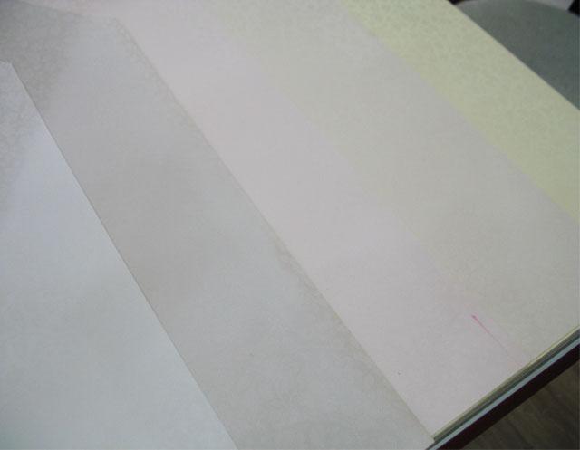 浅色暗花壁纸贴图